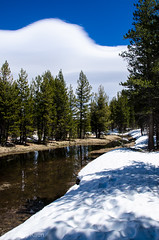 Crossing the Creek (lindsay_kaun) Tags: california mountains landscapes yosemitenationalpark tiogaroad