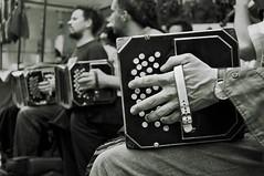 Bandoneon (Miguel_Iglesias) Tags: blackandwhite bw blancoynegro argentina mac aperture buenosaires nikon bn tango santelmo porteo orquesta bandoneon d90 tanguero porteno