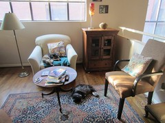 Cozy afternoon (Philosopher Queen) Tags: cats house dusty home room mina diningroom kitties tvroom