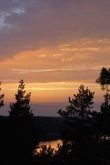 Sunset in Nauvo Island (Larisa Deac) Tags: trees sunset sea nature rock forest calm baltic nagu archipelago