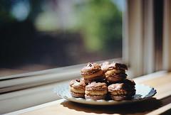 the love of film (manyfires) Tags: food film kitchen analog 35mm portland dessert baking bokeh nikonf100 pdx bake windowlight macarons bakingwithkatie