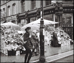 grafton street 2 - Explored (NIKKI O BRIEN) Tags: blackandwhite dublin flower film monochrome 35mm minolta graftonstreet sellers