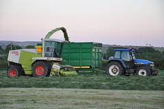Claas Jaguar 840 Silage Harvester & New Holland TM130 Tractor with a Thorpe Silage Trailer (Shane Casey CK25) Tags: new horse tractor holland green up field grass night evening countryside hp power farm cork farming working harvest ground thorpe cutting land late farmer jaguar trailer pick agriculture silage pulling harvester collecting fodder 840 claas agri rathcormac 2013 gatherng tm130