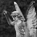 83-Gemma McGuire - Cemetery