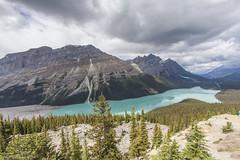 Peyto Lake (ashu_g) Tags: mountains banffnationalpark canadianrockies lakepeyto canon50d