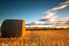 Sunlight And Shadows (Dave Brightwell) Tags: sky sunlight field barley clouds rural sunrise farm wheat straw hay bales hitech countydurham wingate castleeden bwnd davebrightwell