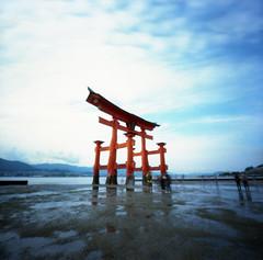 Itsukushima Shrine (cheetahtype) Tags: 120 film japan mediumformat shrine kodak pinhole miyajima torii zero2000 zeroimage itsukushima ektar