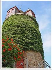 Homberg/Ohm - Brauhausturm