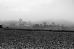 Fog (esteveb) Tags: bw fog de landscape bin sant bages paisatge fruitós d7000