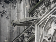 Wasserspeier am Klner Dom (onnola) Tags: sculpture church germany deutschland cathedral dom kirche cologne skulptur kln gargoyle nordrheinwestfalen gargouille figur gotik grgola wasserspeier northrhinewestphalia rzygacz gargolla