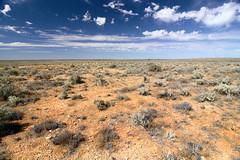 Entering Desert (sine.nomine) Tags: travel australia outback backobourke barrierhwy