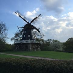 Mölleplatsen (Håkan Dahlström) Tags: park windmill architecture photography se skåne sweden f22 uncropped malmö iphone 2015 slottsparken skånelän mölleplatsen gamlastaden iphonephoto iphone6 iphone6backcamera415mmf22 ¹⁄₉₀₀sek 2406052015184424