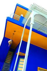 Maison des Illustres - Jardin Majorelle (jeffandcompagny) Tags: africa blue art colors yellow jaune garden design couleurs jardin bleu ysl morocco maroc marrakech majorelle souk medina saintlaurent afrique yvessaintlaurent berberes bleumajorelle