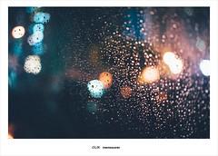 Rainy Day (ikuin) Tags: rain zeiss 35mm t rainyday bokeh f14 sony kaohsiung 365 fullframe 高雄 ff distagon carlzeiss 雨 雨天 下雨 a7r emount sonya7r ilcea7r sonyilcea7r 2015生活紀錄 fe35mmf14 sel35f14z carlzeissdistagontfe35mmf14za