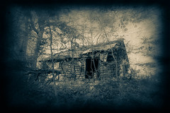 IMG_9721-Edit.jpg (little~ny) Tags: old house tree abandoned home broken rural forest vintage dark outdoors wooden cabin woods alone antique empty rustic neglected cottage structure retro creepy weathered remote shack concept damaged toned dilapidated secluded