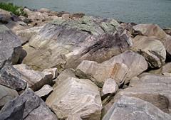 Talus from bluff of Baraboo Quartzite (upper Paleoproterozoic, ~1.7 Ga; Tumbled Rocks Trail, Devil's Lake State Park, Wisconsin, USA) 3 (James St. John) Tags: park lake rocks state south devils trail ranges range quartzite baraboo precambrian tumbled paleoproterozoic proterozoic