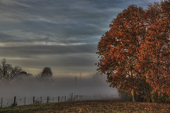 Autumn Backyard (Klaus Ficker --Landscape and Nature Photographer--) Tags: autumn backyard herbst frog nebel cold color leaves old misty milf milfday clouds erly sunset kentuckyphotography klausficker usa kentucky frankfort canon eos5dmarkiv