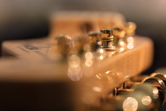 Bokehcaster III (Role Bigler) Tags: canonef28100islmacro canoneos5dsr egitarre gitarre gold guitar llens macro musicalinstrument musikinstrument saiten stratocaster strings bokeh bokehlicious fender goldenstrings