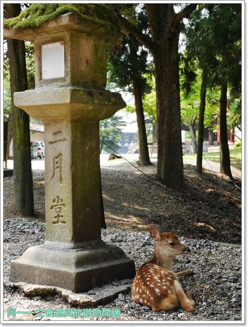 奈良景點.美食.東大寺.二月宮.鹿.葛切.日式甜點image062