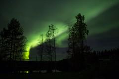 25092016-IMG_1210 (P-O Andersson) Tags: vsterbottensln sverige se sky night borealis aurora light northern exposure long