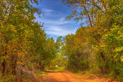 Road in HDR (yosmama151) Tags: oklahoma photomatix hdr highdynamicrange braketed saturation color bluesky clouds trees road reddirt stinchcomb