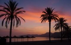 Atardecer de Otoo en San Cristbal (Toms Hornos) Tags: sunset puestadesol autumn otoo beach playa arena mar sea palmeras colores
