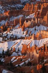 Bryce Canyon_3481-2 (Jay Hyer) Tags: bryce brycecanyon utah nationalpark