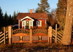 Hstsolen lyser p vackert litet torp och vackra grindar 2016-10-28 Lnnsvgen (Torgil Jarnling) Tags: hstsolen lyser p vackert litet torp och vackra grindar 20161028 lnnsvgen
