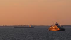 (:NFR:) Tags: frge ferry langelandsfrgen langeland mflangeland langelandsblt vand water hav sea sunset solnedgang skibstrafik skibe ships goldenhour