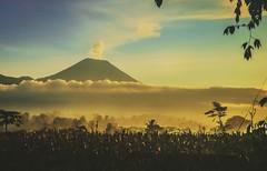 #sunrise #semeru #mahameru #malang (zayyinanshori) Tags: mahameru sunrise semeru malang
