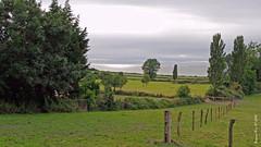 Sur la route d'Honfleur. 2 (Barnie76@ ,) Tags: paysage honfleur vert cloture mer paysdauge calvados normandie bassenormandie