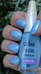 Compartilha! - Colorama (Marli 2011) Tags: coleofamosa colorama