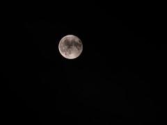 161016-P1230853DMC-GH3 (O.Th Photographie) Tags: super moon supermond mond maschen gütterbahnhof night perigäum kein gesehen