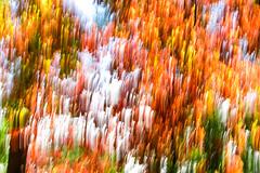 falling colors (picazam) Tags: autum fall color fallcolor motionblur motion blur colors falling cadescove smokymountainnationalpark bir azam canon