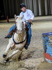 Cheval Passion 2015 (orcamel30) Tags: cheval passion 2015 avignon concours texas baril course nikon d5200 55300 vitesse fast rapide temps chrono