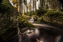 Herbst im Fichtelgebirge 01 - am weien Main (ho4587@ymail.com) Tags: herbst fichtelgebirge wald wasser main fluss licht lzb steine felsen moos grn