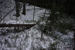 Afers (inge.sader) Tags: sdtirol altoadige trentino eisacktal afers mellaun standr albeins landschaft landscape natur trekking