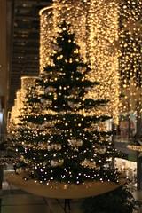 Potsdamer Platz Arkaden - schwebender und leuchtender Baum (Pascal Volk) Tags: berlin mitte berlinmitte potsdamerplatz arkaden shoppingmall einkaufszentrum weihnachtsdekoration weihnachtsschmuck christmasdecoration christmastree weihnachtsbaum canoneos6d lensbabycomposerproii lensbabyedge50optic lbe50 lbcp2 lbcp2e50 50mm f32