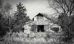 Rural Iowa (Justin Loyd Photography) Tags: iowa canon barn rural country bw blackandwhite monochrome madisoncounty vintage photography still old standing scenic scenery 18135stm 70d rustic hidden secluded wooden building wild farm weathered