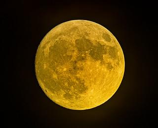 It looks Full Moon to me... (Explored)