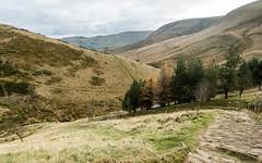 NB-22.jpg (neil.bulman) Tags: kinder edale peakdistrict nature jacobsladder derbyshire outdoors penineway countryside highpeak hopevalley rambling england unitedkingdom gb