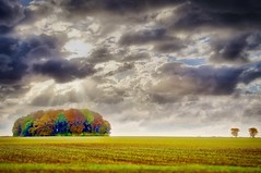 Autumn Revamped (Jochem.Herremans) Tags: forest autumn sky sun clouds nature agriculture colors color green red farm farmer sunbeam beam dark weather gembloux lonely cloudscape colorful countryside day daytime europe belgium grass land grassland