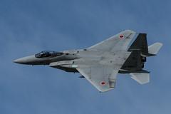 DSC_6774.jpg (kenichi0213) Tags:  jasdf     airshow japan gifu nikon nikkor d500