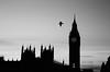 London (Julia L.S) Tags: london londres uk england canon50mm canon50mm18 citylights lights luces londonbuildings river rio windows landscapes landscapeuk landscapesofengland blackandwhite bird fly