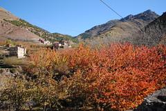 Autumn colours in Aremd (NaomiQYTL) Tags: berbervillage aroumd aremd landscape trekatlas trekking highatlas atlasmountains morocco holiday travel