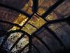 la salamandra (maximorgana) Tags: tree glass leaf crystal dry ceiling lying cartagena lasalamandra
