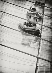 (mauspray) Tags: blackandwhite bw italy water sepia river boats nikon fiume barche bow ropes acqua molo biancoenero abruzzo pescara corde seppia d300 180mm approdo fiumepescara