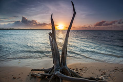 No Man's Land Beach (timcorbin) Tags: trees sunset sun seascape colour beach clouds rocks caribbean nomansland tobago 1740l trinidadandtobago canon5dmarkii