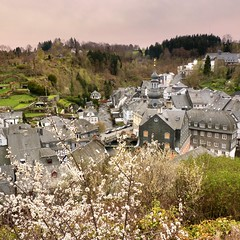 View over the historical old town Monschau (Bn) Tags: park street houses castle nature river germany walking geotagged town spring scenery blossom north ruin charm eifel historic ruine valley hillside quaint picturesque venn haller fortress narrow bloesem monschau duitsland unchanged hedges timbered roer rur hohes rhinewestphalia noordrijnwestfalen flickrhivemindgroup geo:lon=6240921 geo:lat=50555666