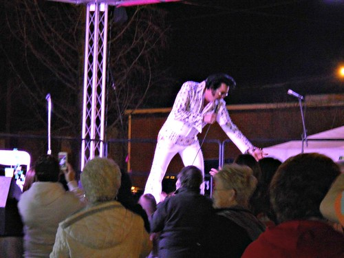 74/365:  Elvis Sighting